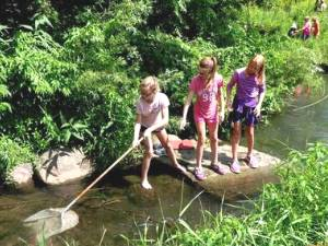 Summer Camps at Hartman Reserve Nature Center
