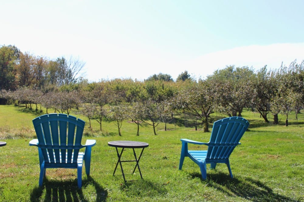 Blueridge Orchard in Denver, Iowa