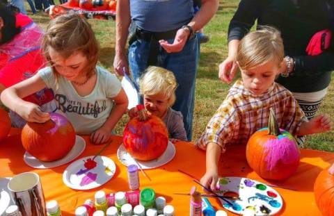 Fall Fun & Pumpkin Patches