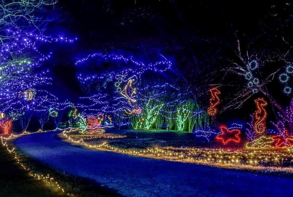 Magical Holiday Light Displays Cedar Falls Tourism