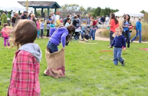 Harvest Traditions: Cedar Valley Arboretum Fall Harvest Festival